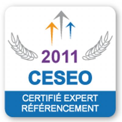 Certifié expert SEO